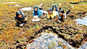 @Pantai Siung, Yogyakarta