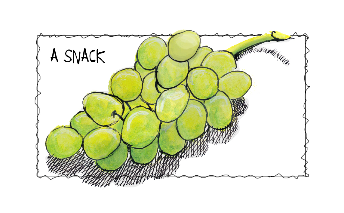 Every Day In June #28 (edm #306)  Draw A Snack Grapes