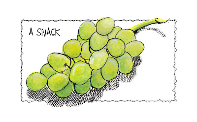 Every Day in June #28 (EDM #306) - Draw a Snack - Grapes - Watercolour with Pen and Ink © Ana Tirolese