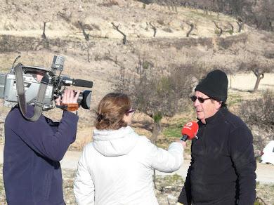 2.000 kg de vidrios retirados por la Plataforma Alcublana y demás voluntarios