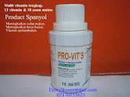PROVITS (Spanyol)
