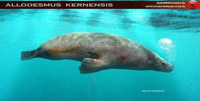 focas prehistoricas Allodesmus