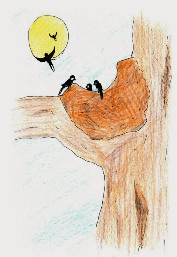 miedo, cuento pájaros