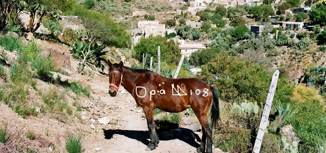 OpaLLIos