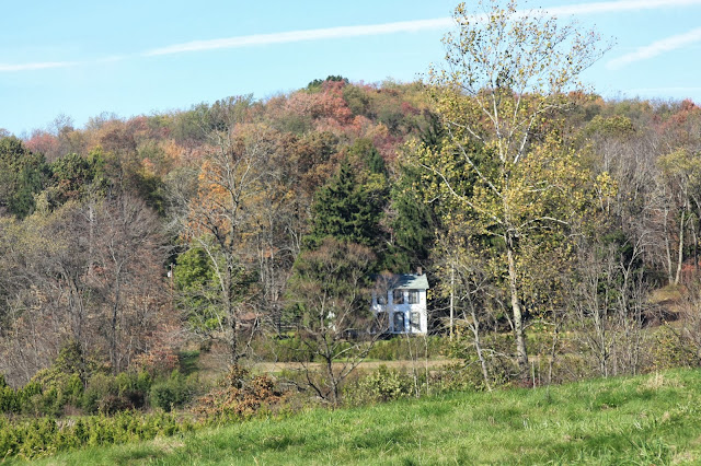 White farmhouse nestled in fall colours