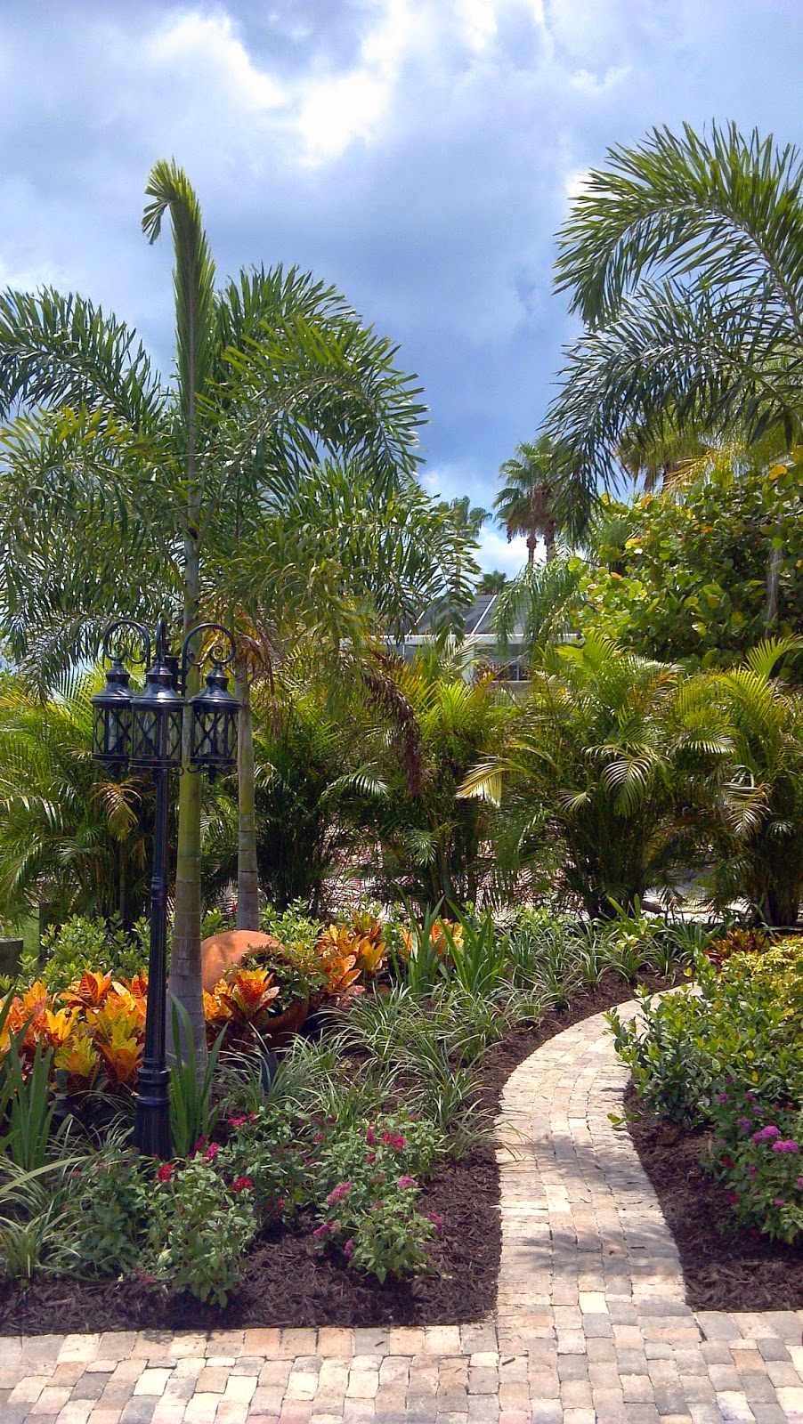 landscaper Apollo Beach