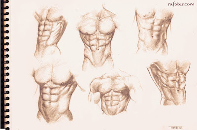 male torso pencil sketch queer