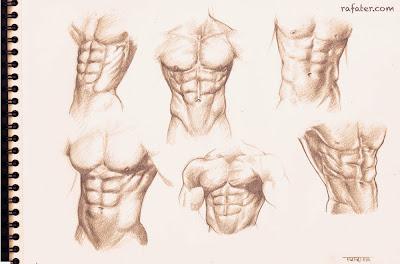 male torso pencil sketch queer