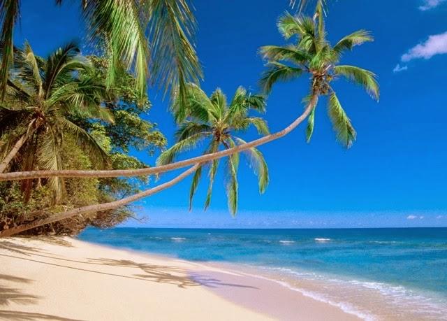 Fiji Suva beach
