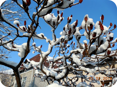 Weekend de iarna la Craiova