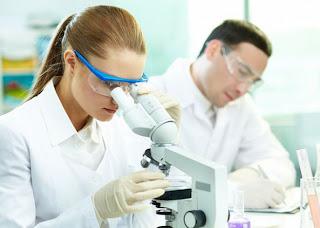 investigacion celulas madre