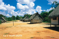 Foresta amazzonica di Ucayali