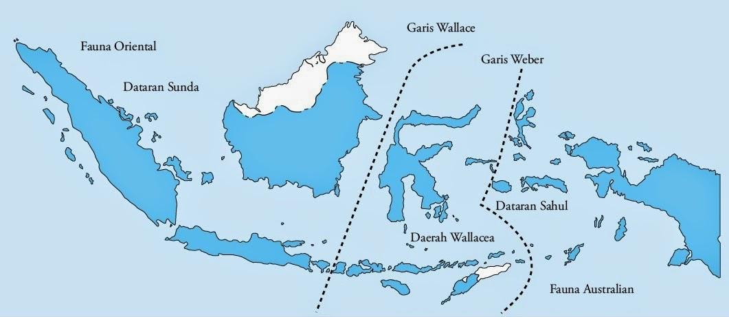Keanekaragaman Hayati Indonesia (Materi Lengkap Biologi ...
