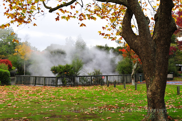 Rotorua, 羅托魯亞, Kuirau Park