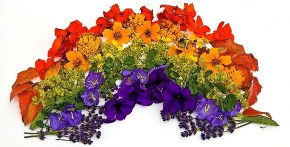 Arreglo floran en tonos de arcoíris