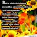 Wierszyki na Dzień Babci na FB / Piękne kartki z życzeniami Dzień Babci