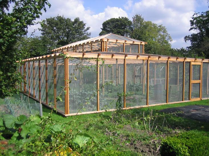 How to protect fruit from birds the garden of eaden for Garden cage