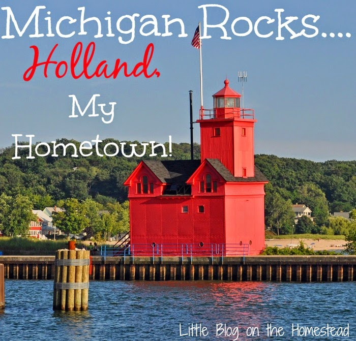 Little Blog on the Homestead - Holland, Michigan