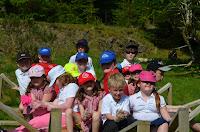 Lochdon School sitting on the nest frame