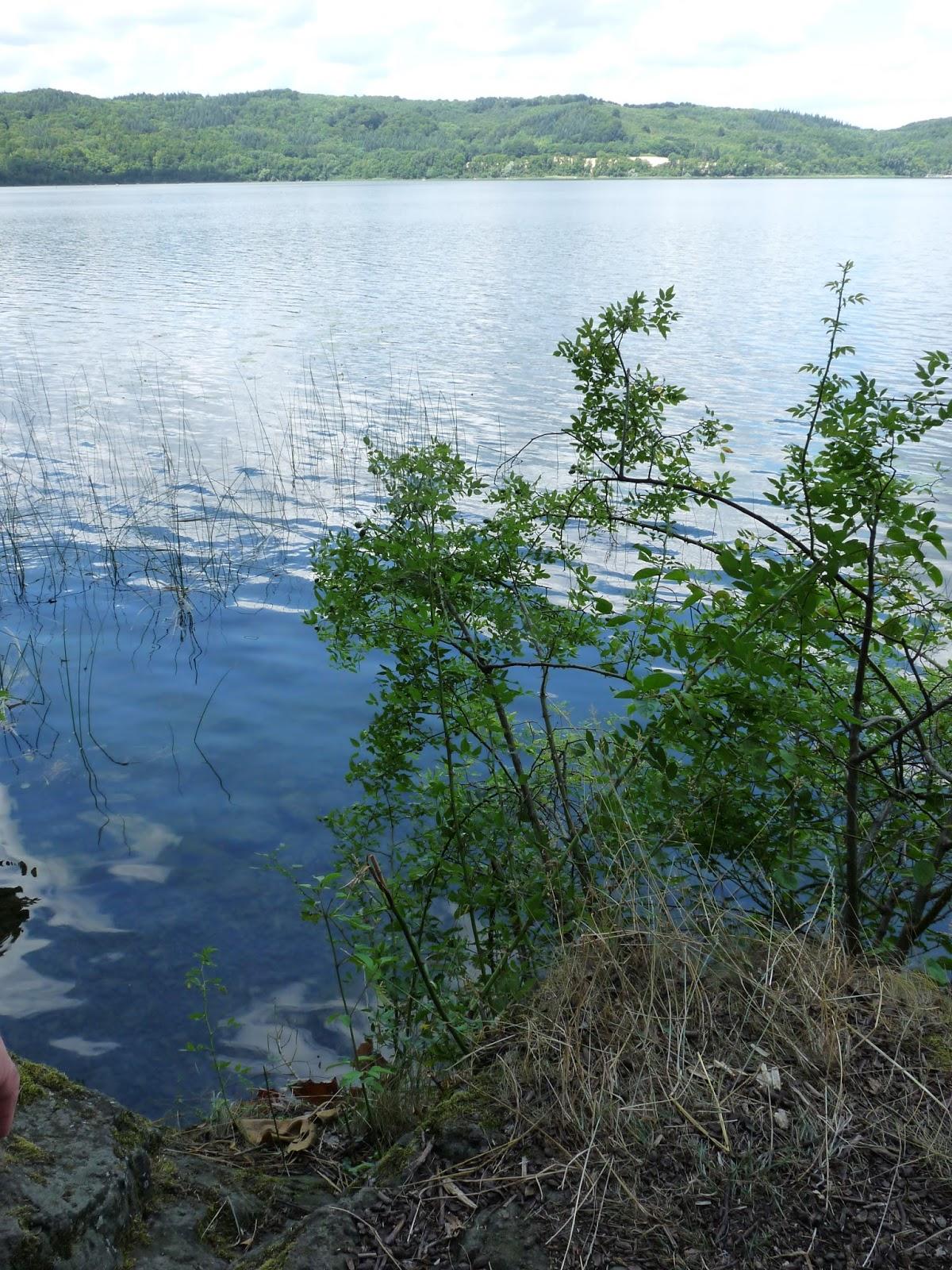 Elegant Wasser Abdrehen Richtung Ideen