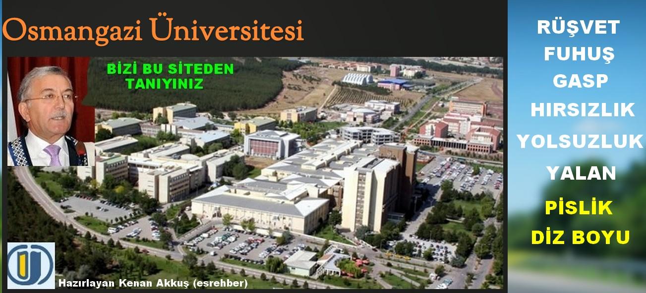 Osmangazi Üniversitesi