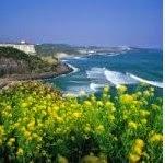 jelajah wisata ke pulau jeju korea