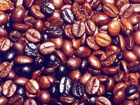 Fruit warehouse coffea coffea arabica for Coffea arabica