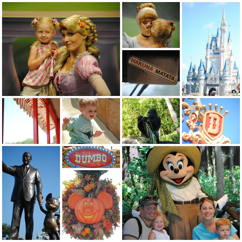 Disney World 2012 collage