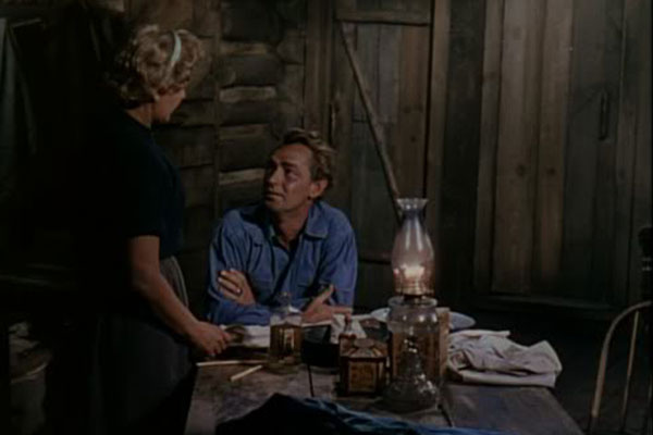 Alan Ladd in George Stevens' Shane
