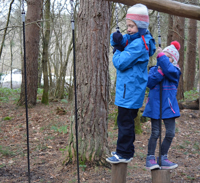 Activities on the Stick Man Trail at Hamsterley Forest