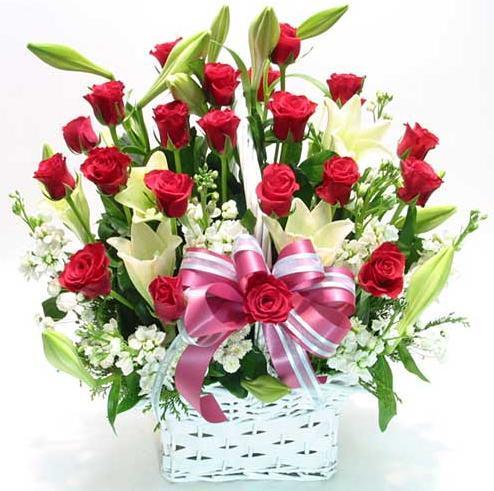 Hình ảnh hoa đẹp ngày 20-11