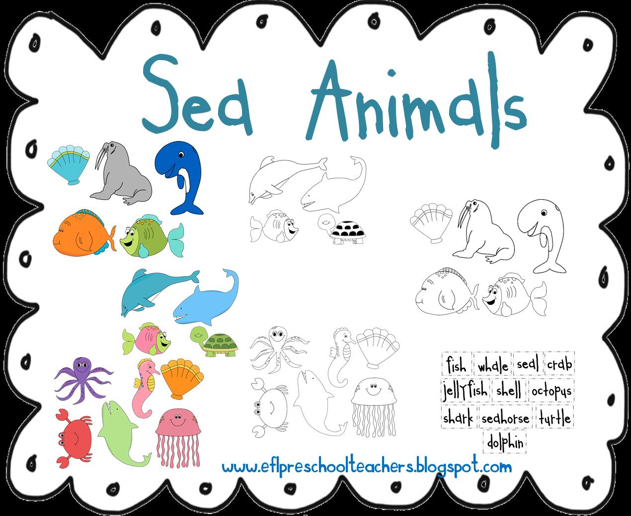 sea animals preschool activities esl efl preschool teachers sea animals theme for 457