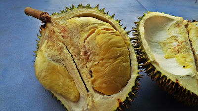 Durians in Malaysia