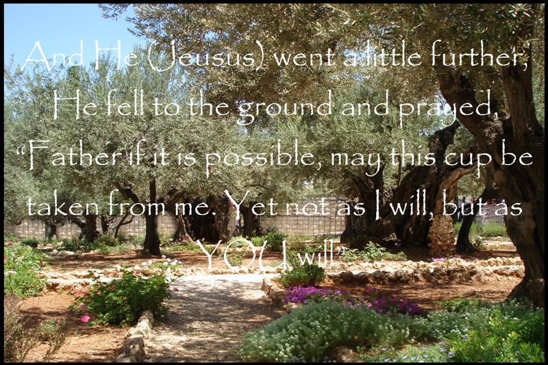 Stonegable Sunday Scripture April 1 2012