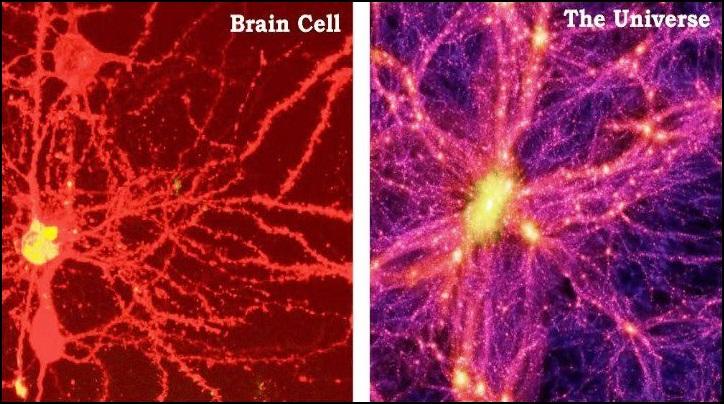 http://1.bp.blogspot.com/-qIwYC19mhCU/UJgpv8Q7uxI/AAAAAAAACdM/8V21FjSvECM/s1600/brain%2Bcell%2Bvs%2Bthe%2Buniverse.jpg