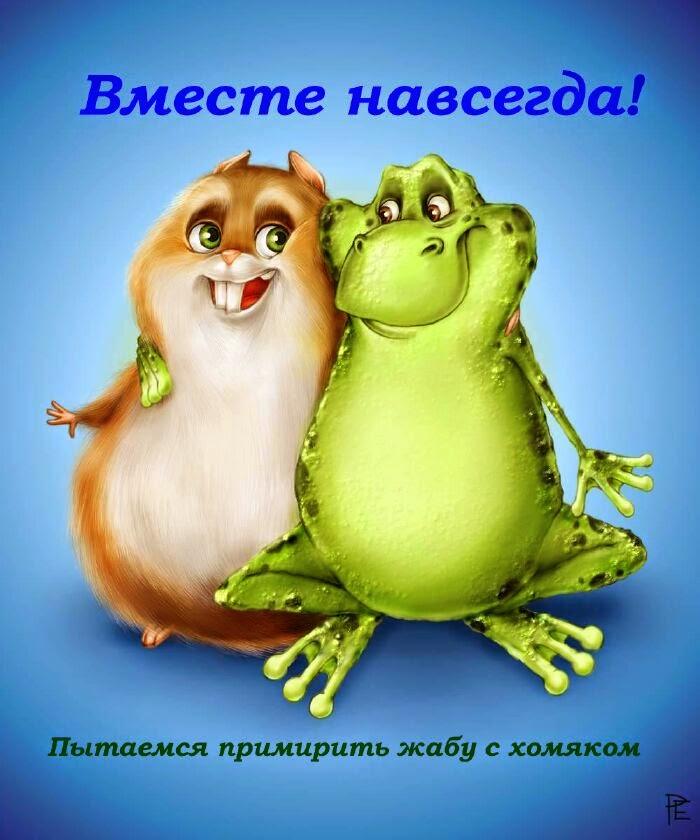 До 15 декабря 2014 Хомяк старается задобрить Жабу
