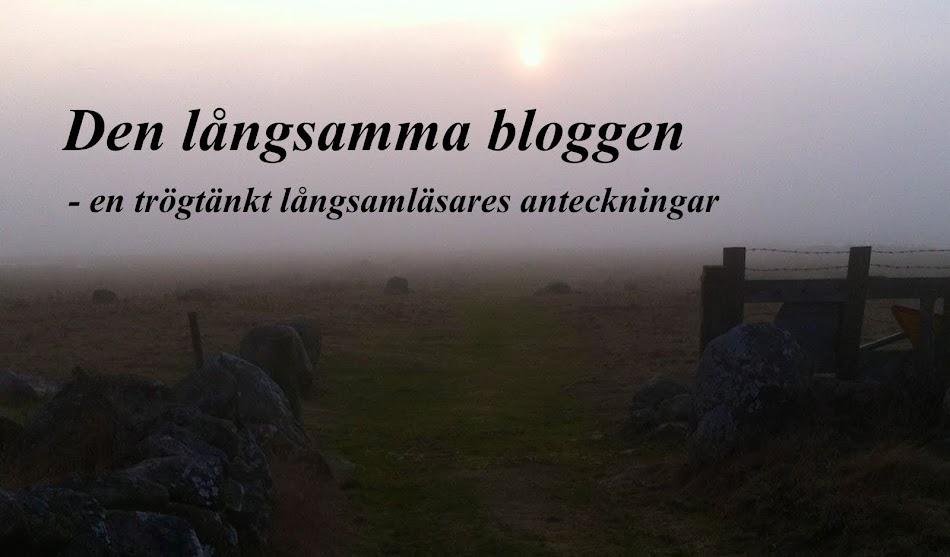 Den långsamma bloggen