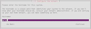 Hostname server