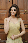 Pranitha Subhash Photos at Pandavulu Pandavulu Tummeda Audio-thumbnail-20