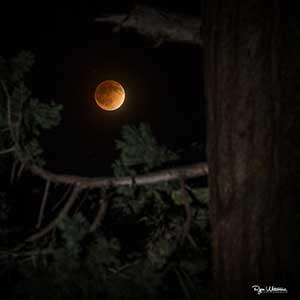 A teljes holdfogyatkozás kezdete
