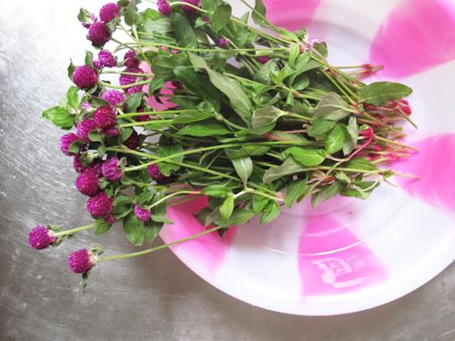 Desfruitsdesfleursetc des fleurs comme des framboises for Commandes fleurs