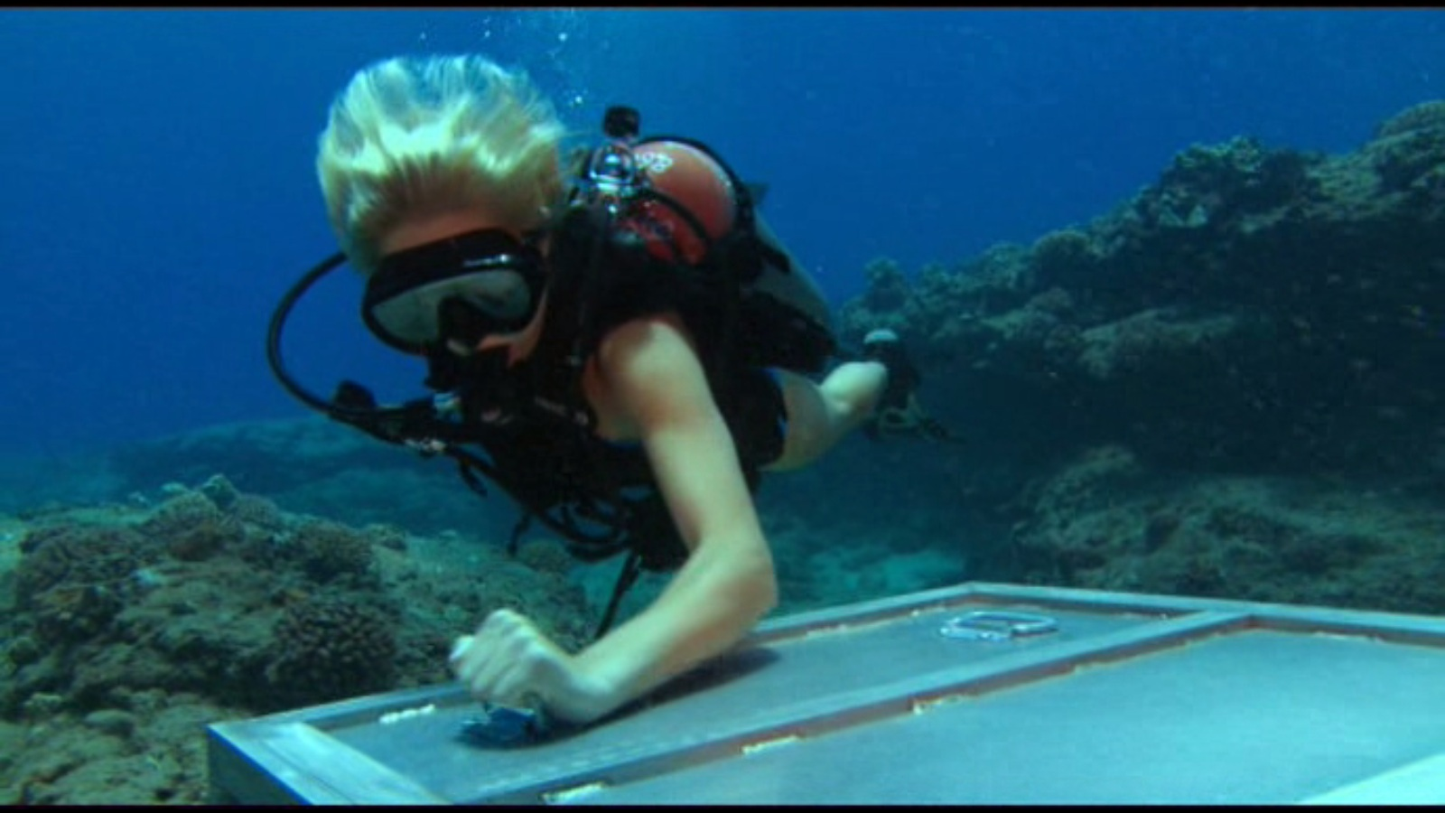watch into the blue 2 the reef online download into the