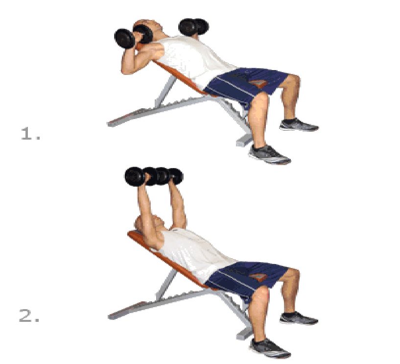 step exercises and fitness chest exercises step 4 incline