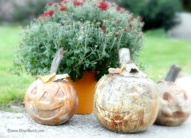 IMG_8022 Rit dye cement pumpkins