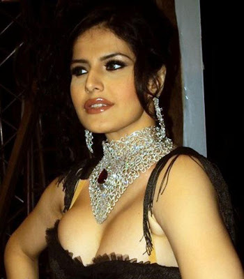 zarine khan photo