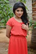 Samyuktha Hornad Glam pics-thumbnail-11
