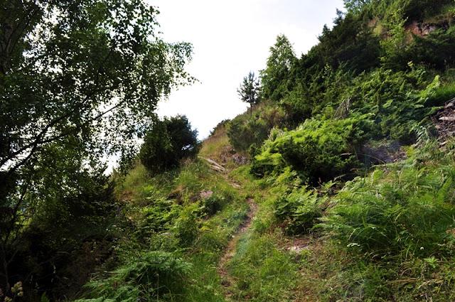 Camino de Nidaros