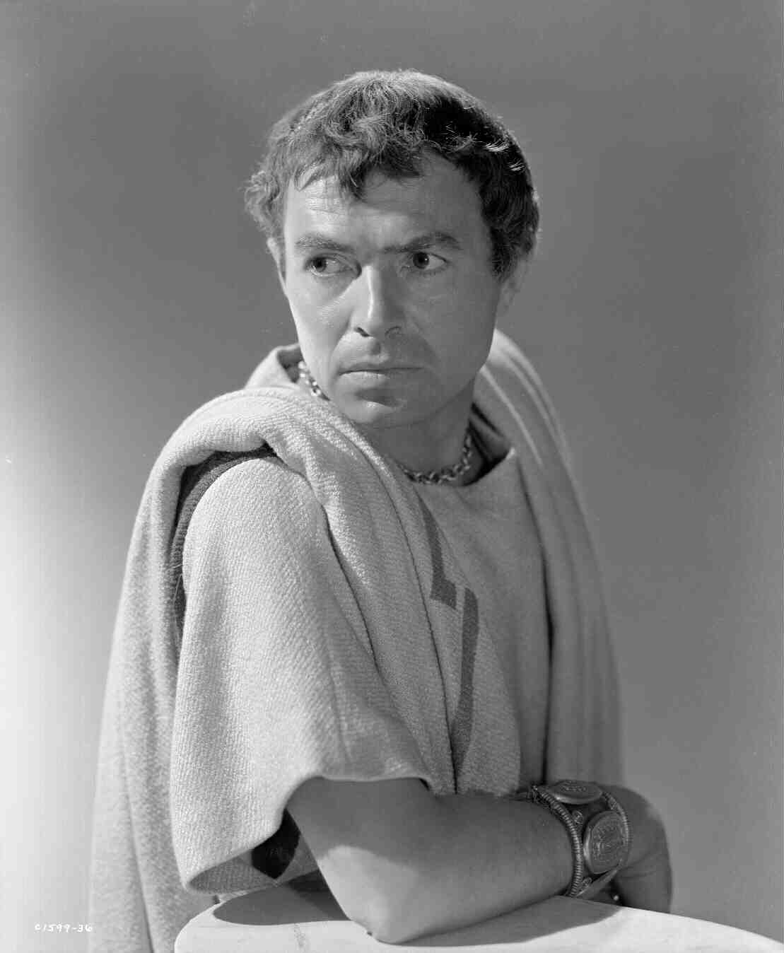 the tragedy of marcus brutus Brutus is one of the central characters in the play 'julius caesar' written by william shakespeare brutus' character is complex, and he is often thought of as a tragic hero.