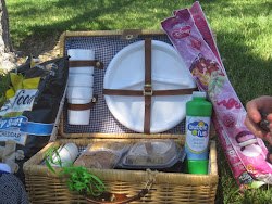 Picnic with the STLs