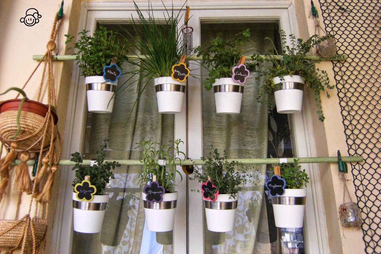 Casa ignoli casa ignoli little garden l 39 orto verticale - Orto in casa ikea ...